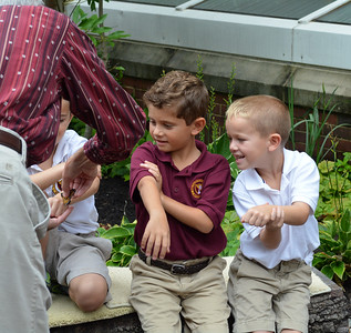 1st Grade Monarch Butterfly Release