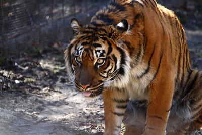 Toronto Zoo 2015