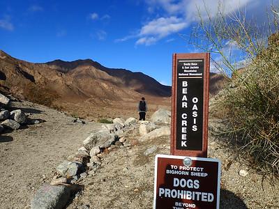 Bear Creek Canyon Oasis trail