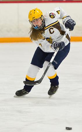 Grosse Pointe South v Regina, Hockey, 1-19-12