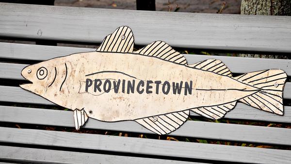 Provincetown & Cape Cod, MA