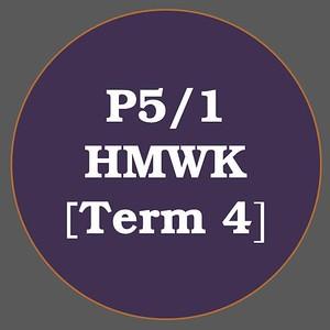 P5/1 HMWK T4