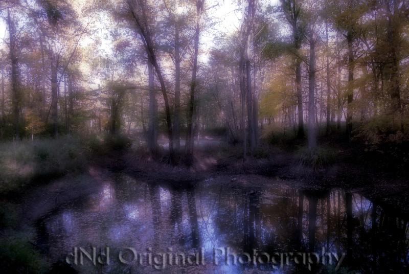 044 Craig White Senior Portraits (pond by cemetary) dreamsuite.jpg