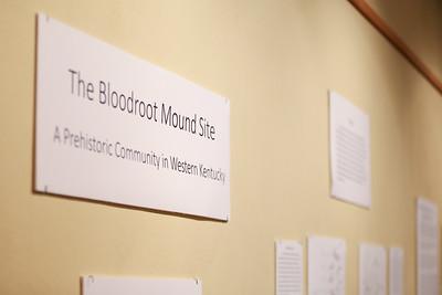 2017 Bloodroot Mound