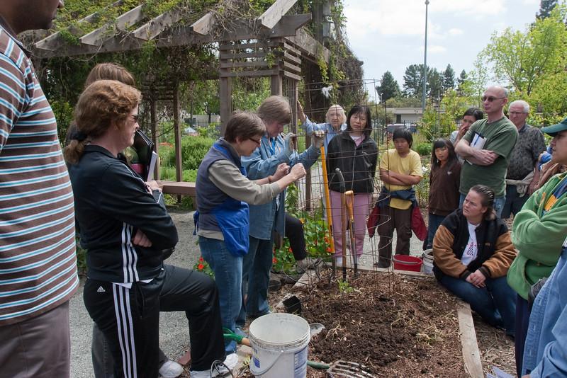More Master Gardener information sessions