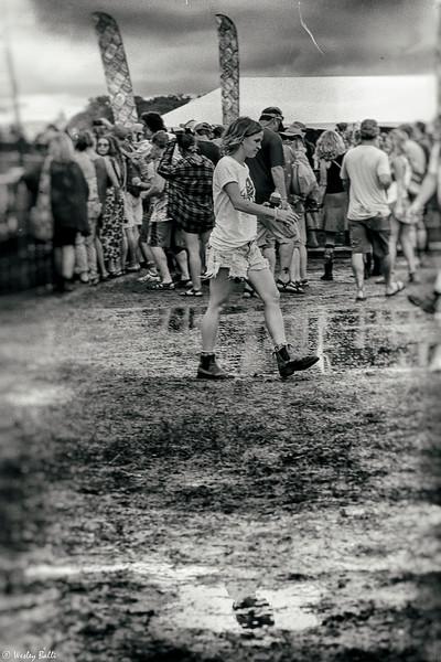 Waterloo 2018 Music Festival