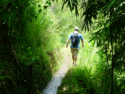 Doi Mae Salong: Hiking