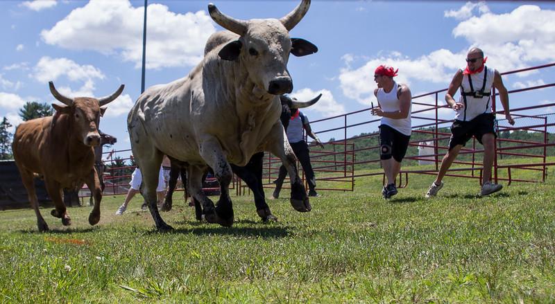 bull-run-1-bobg_4_20141019_1285243262.jpg