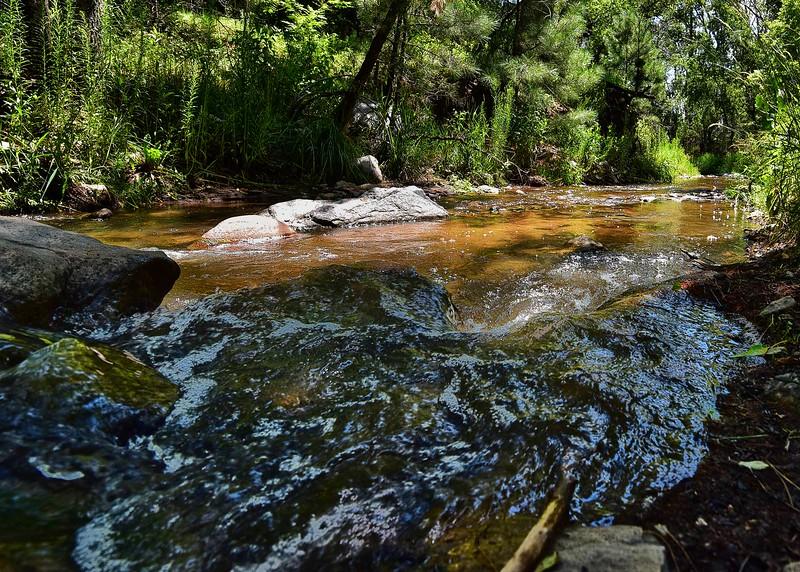 NEA_0311-7x5-Bonito Creek.jpg