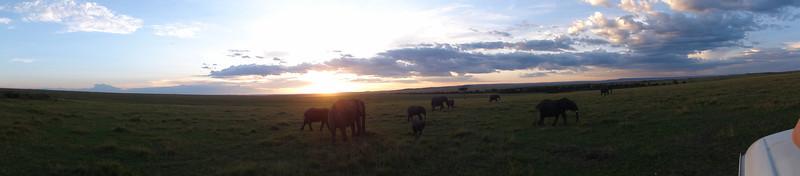 East Africa Safari 156.jpg