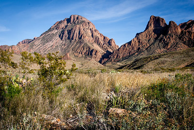 Big Bend NP 11/13