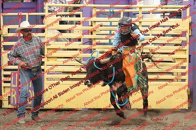 Bull & Steer Riding