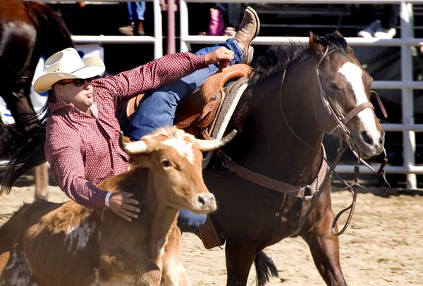 San Dimas Rodeo 14