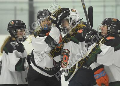 Mansfield/Oliver Ames - Longmeadow Girls Hockey 2-18-19