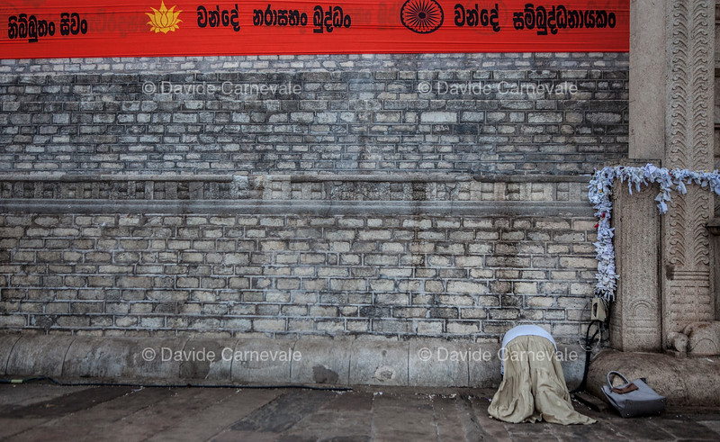 srilanka (40 di 74).jpg