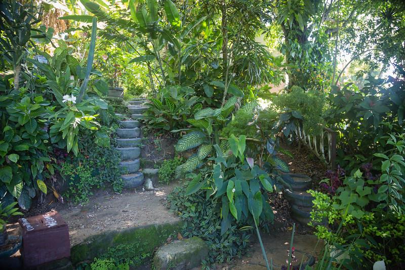 Sitie Eco Park Vidigal Favela Tour Rio