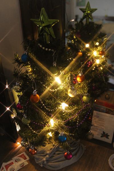 11/23/2012 - Tiny Tree