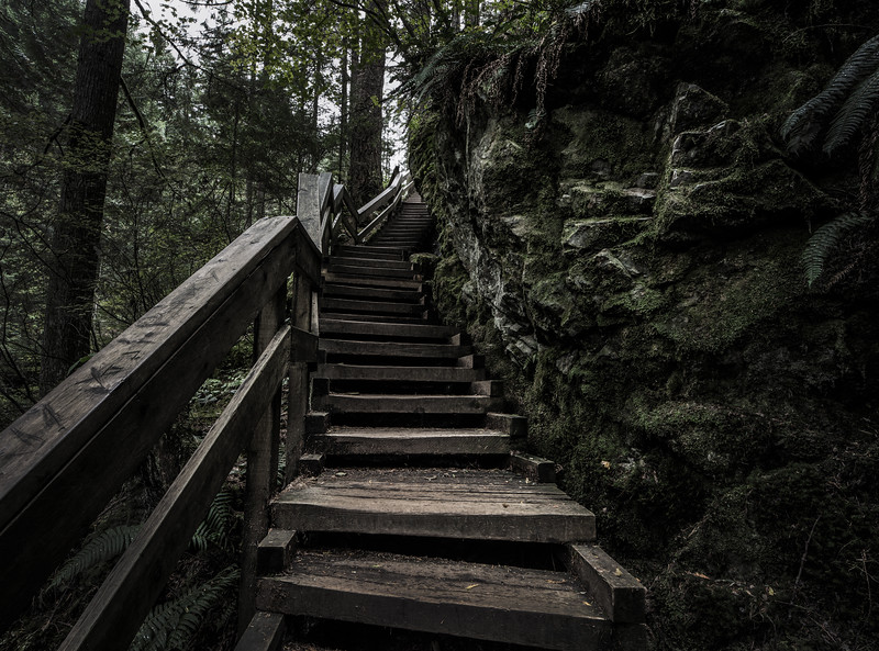 Lynn Canyon Steps.jpg