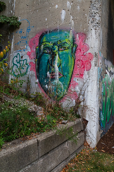 Grafitti Face, Dequindre Cut, Detroit