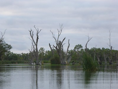 Loch Luna in the morning