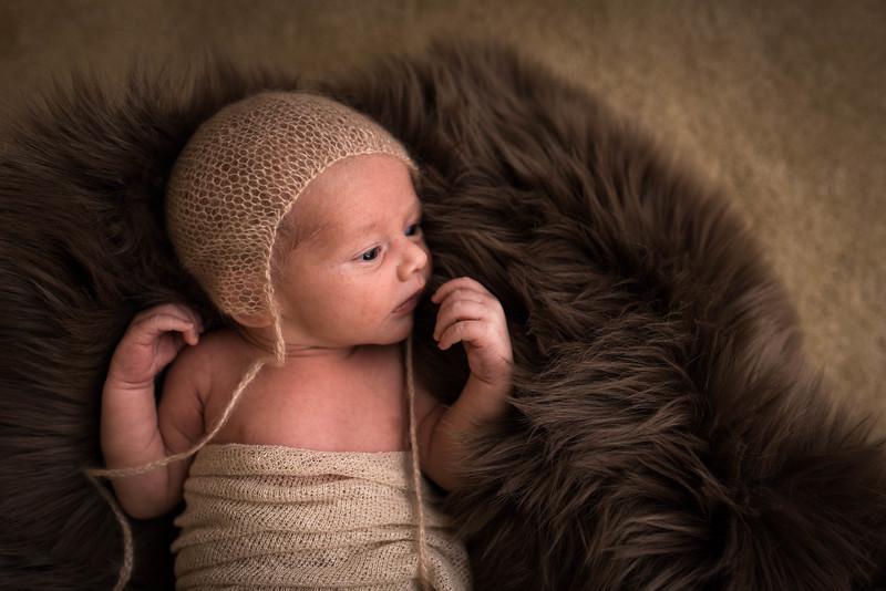 Cole Newborn - 75 - _1BT8465.jpg