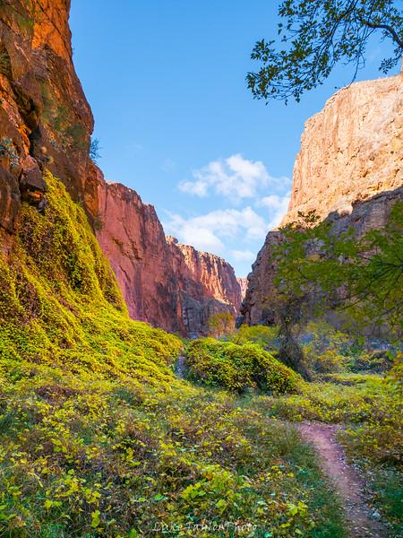 Arizona-132.jpg