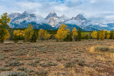 Grand Teton and Yellowstone 32-bit