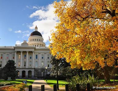 Sacramento Autumn Color