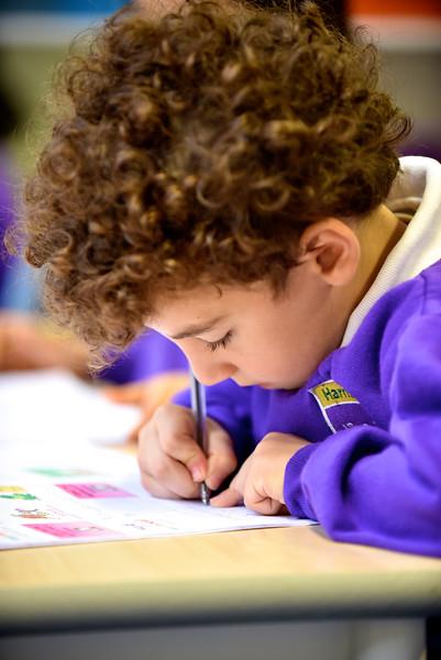 Harris Primary Academy 200.jpg