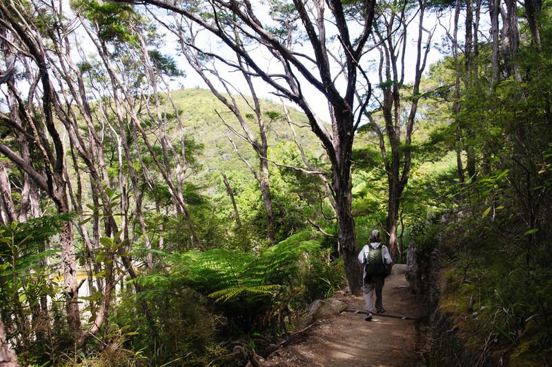 Able Tasman costal track
