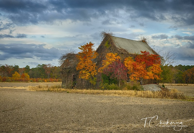 Old Barn with Fall Colors-1505676835321.jpg
