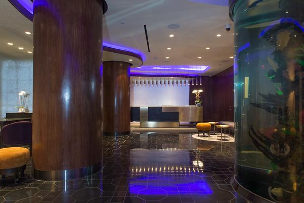 Dream Hotel NYC - Studio Gaia