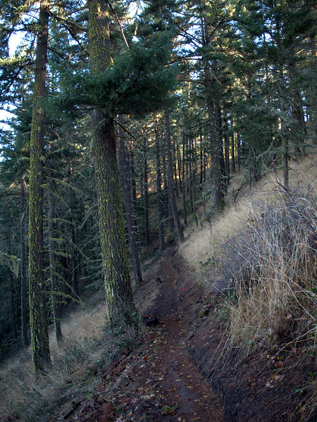 East Applegate Ridge Trail Oregon