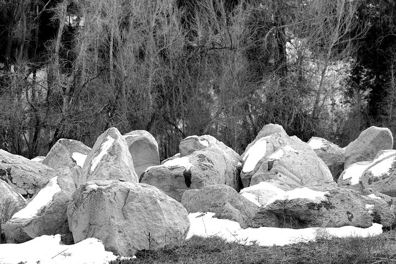 B&W pictures of boulders by the river.