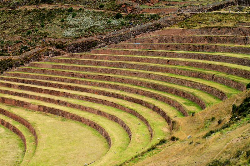 Amazing terraces