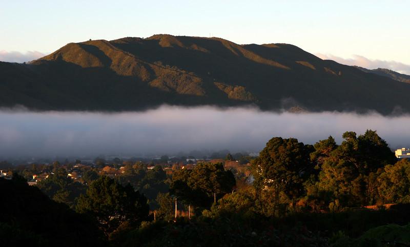 Early morning valley fog, Hutt Valley, 28 November 2008.