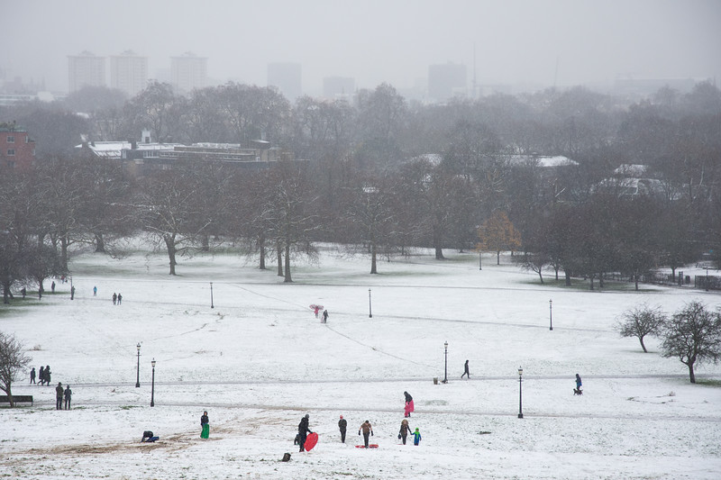 Sledging in the snow in London