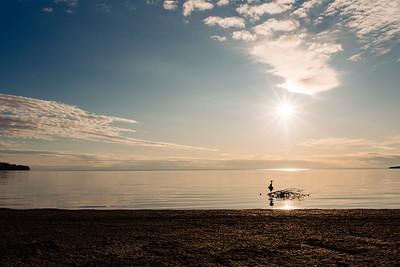Camping Sandbanks 2019