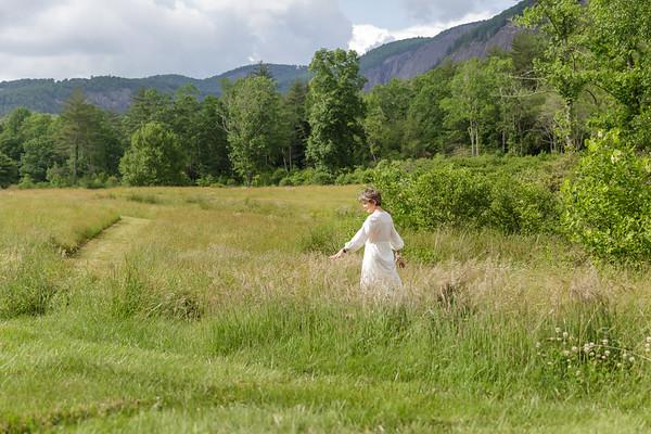 Artist in the Field
