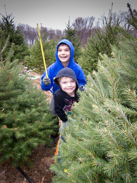 20141130_schmidts_christmas_tree_farm_2171.jpg