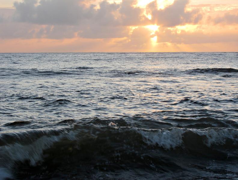Kauai'10_S90_184.jpg