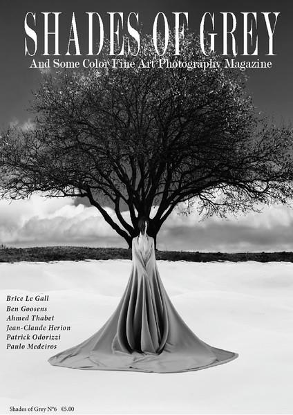 Shade of grey fine art photography, n°6, 2016. https://shadesofgreymagazine.com/product/shades-of-grey-magazine-n6/