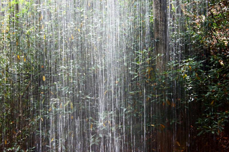 Pisgah Forest 9-30-12 58.jpg