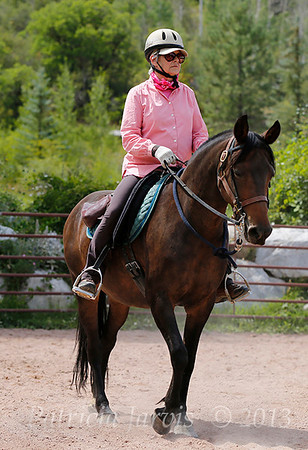 Snowmass Working Equitation Clinic