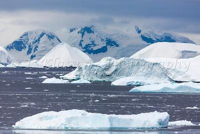 Antarctica Various
