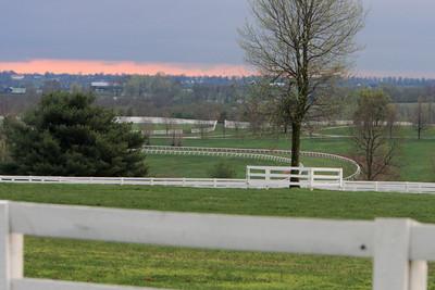 Lexington Horse Farms