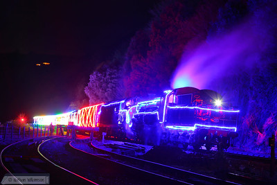 The Train of Lights