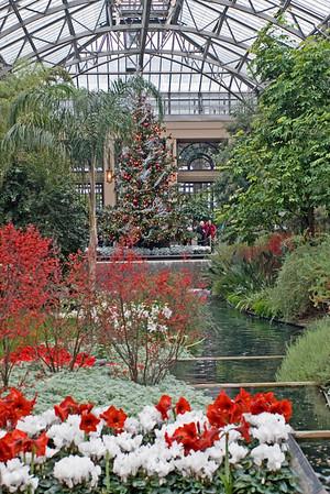 Longwood Gardens Christmas 2008