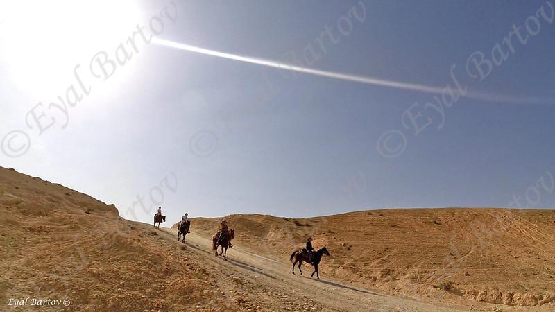 Sirin Riders 31.jpg