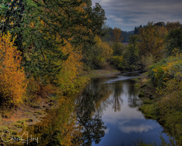 Tonemapped Trees and River.jpg